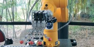 Robotic hand suits complex manipulation tasks