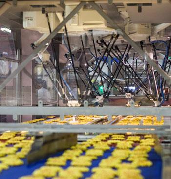 Fanuc Robots Boost Production At Waffle Plant Robotics