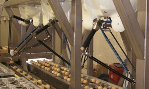 Food and beverage solutions at Automatica 2018